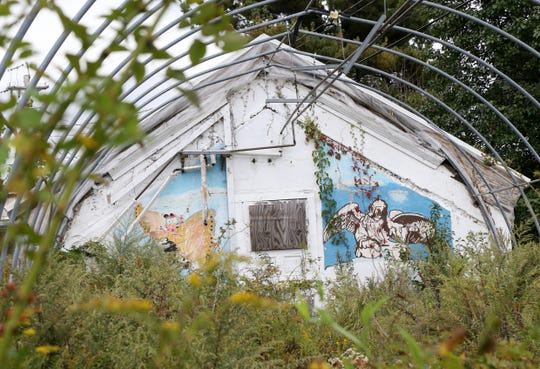 Plants grow inside one of the greenhouses at the Beacon Correctional Facility on October 11, 2018.