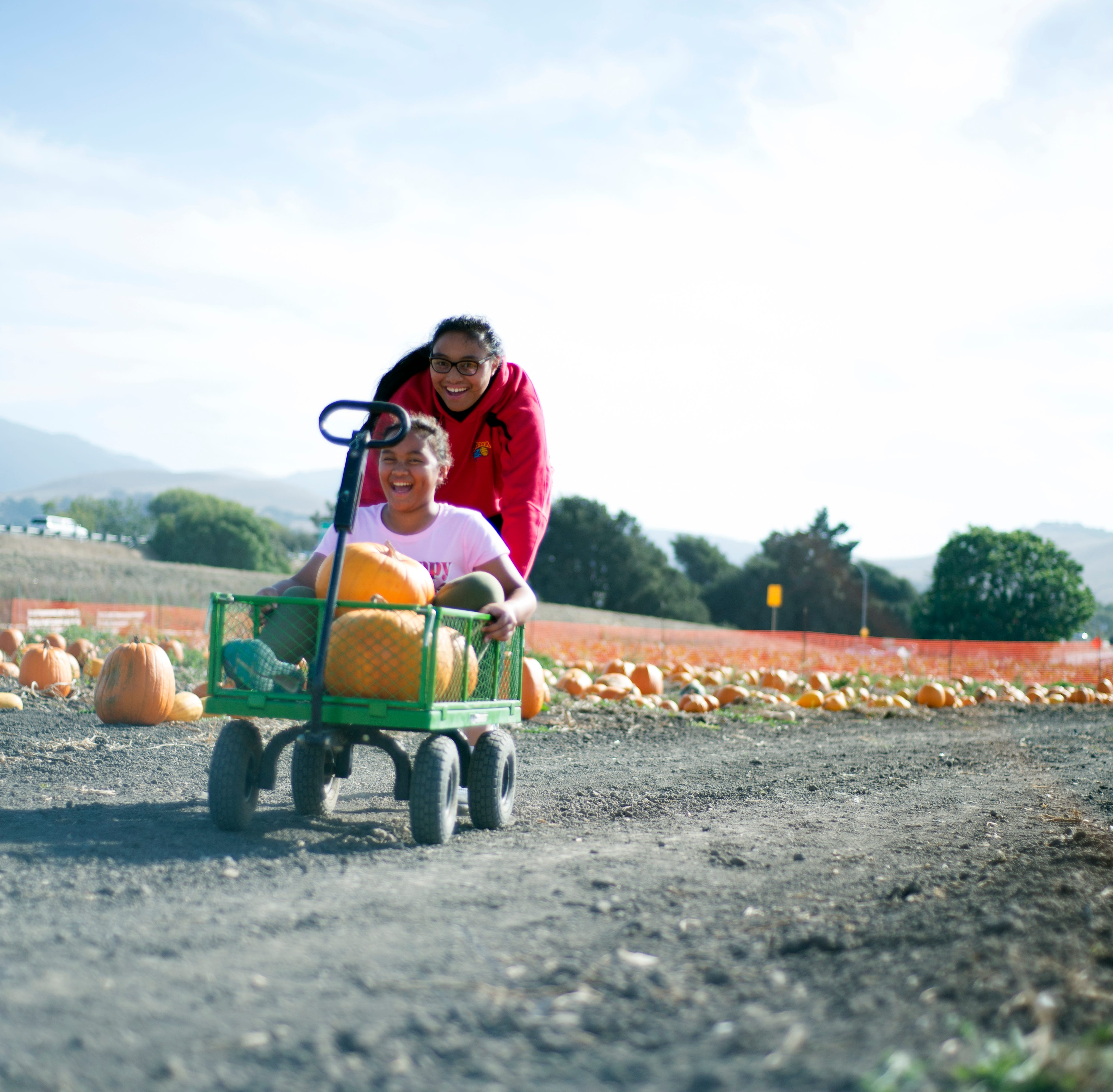 Trick or teach: The Farm brings ag to the people