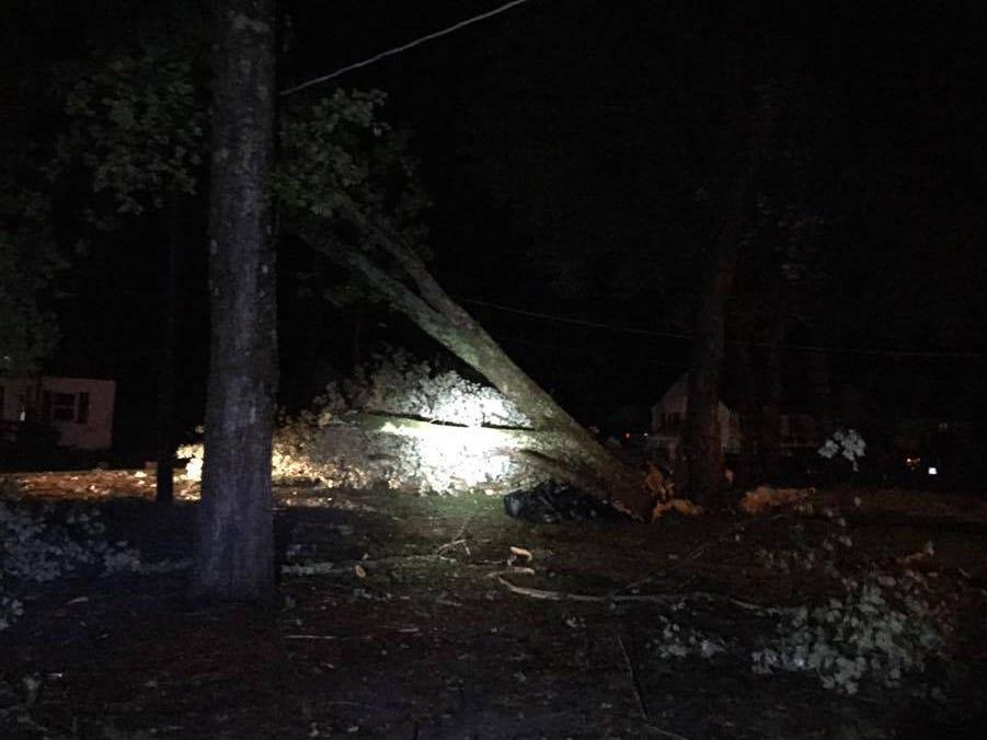 A fallen tree stands precariously next to a utility pole in Exmore, Virginia.