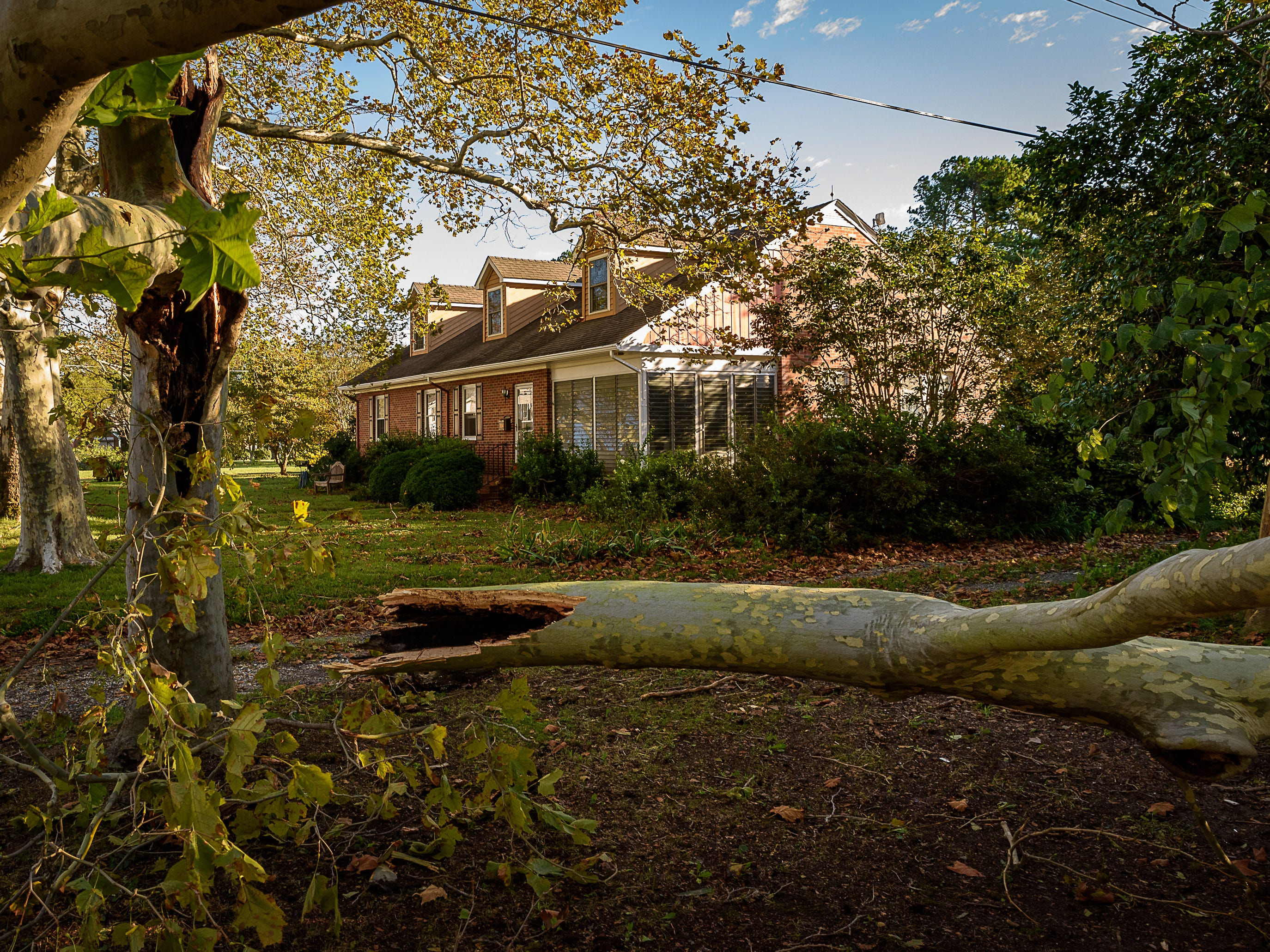 Several large trees came down during the storm that swept through Cape Charles, Virginia overnight into Oct. 12, 2018.