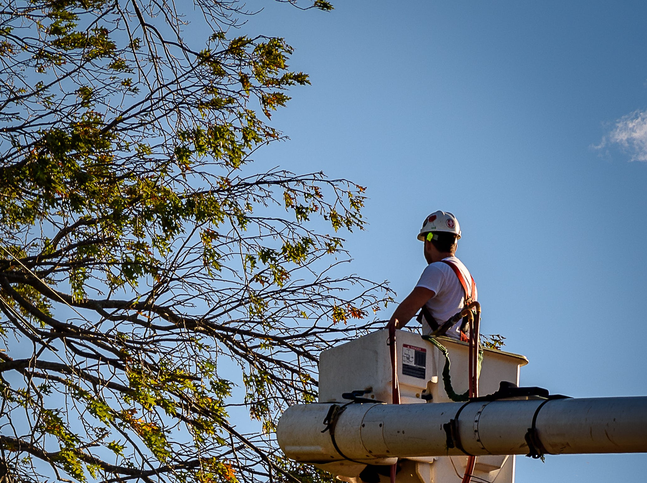 Tree clearing crews cut back potentially dangerous branches, so power can be restored in Cape Charles, Virginia on Oct. 12, 2018.