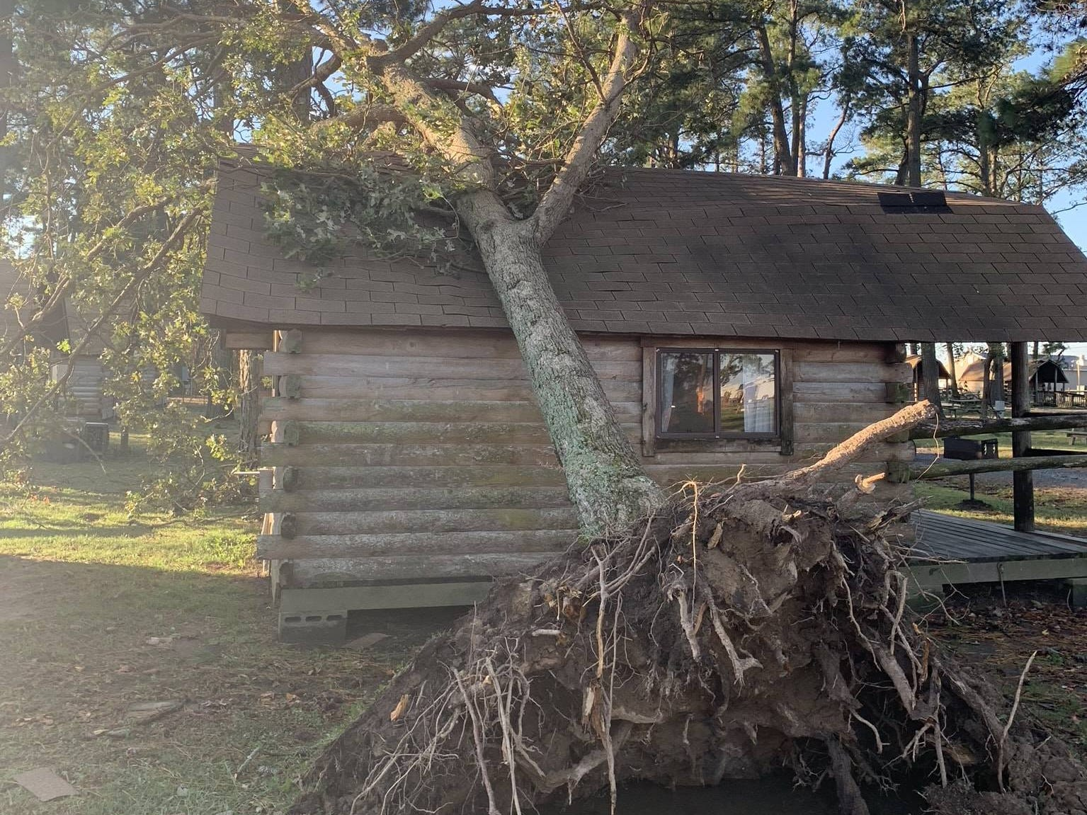An uprooted tree lies on a cabin at the Cherrystone Family Camping Resort in Cape Charles.