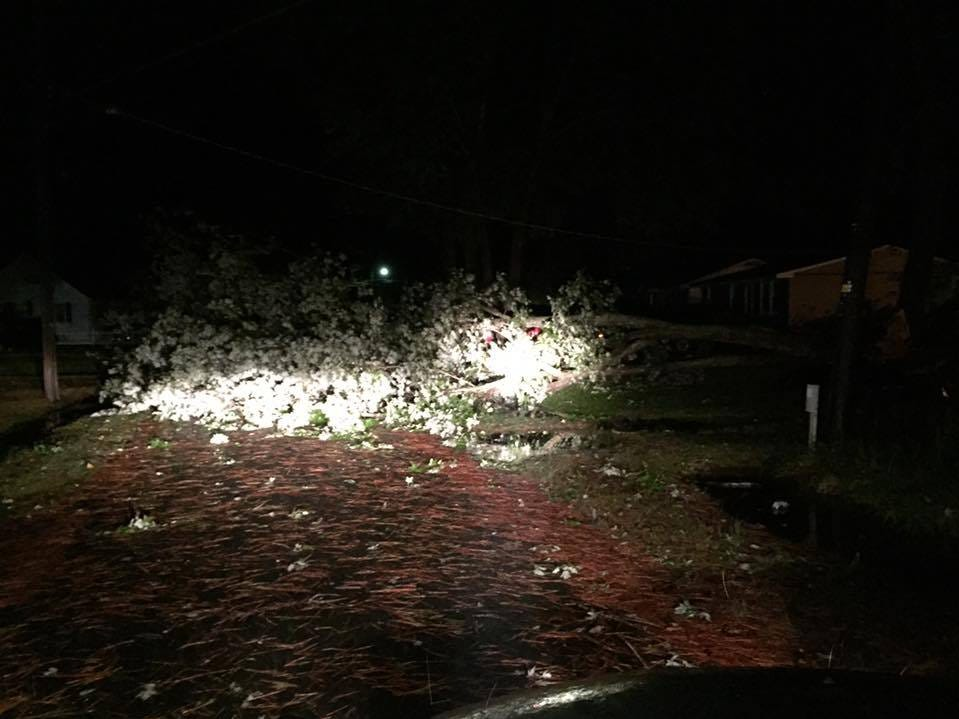 A downed tree lies on a  road in Exmore Thursday night.