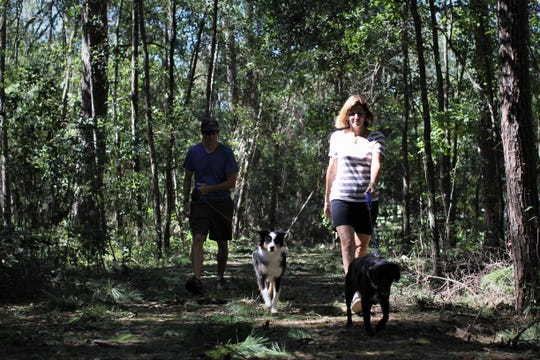 Glen and Laura Frandsen walk their dogs on a Miccosukee Greenway trail on Friday amid fall temperatures. The couple, which doesn't have power at their Canopy home, took a moment to enjoy the great outdoors.