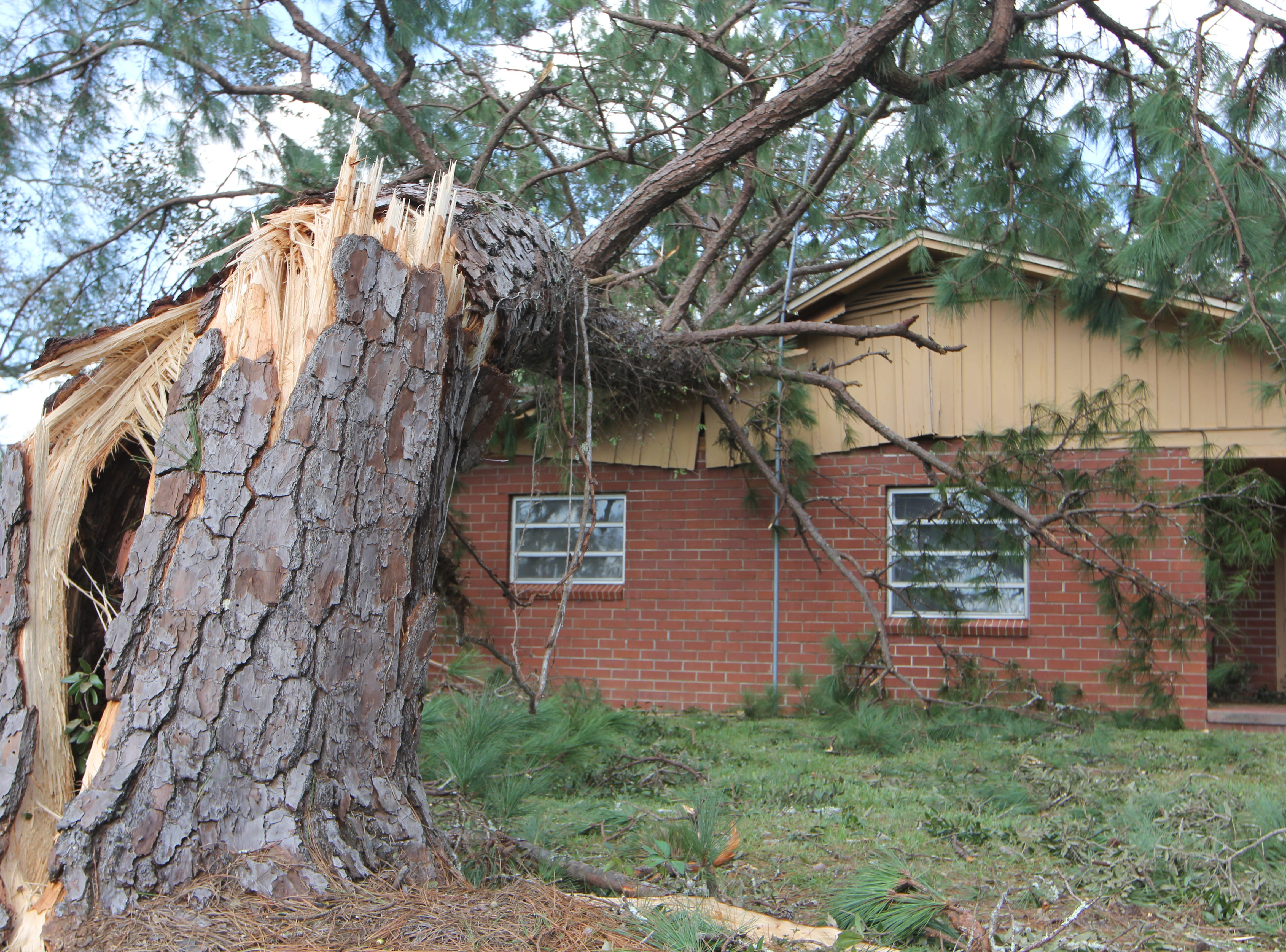 A tree that smashed through a home in  Gadsden County pictured Thursday, Oct. 11, 2018.