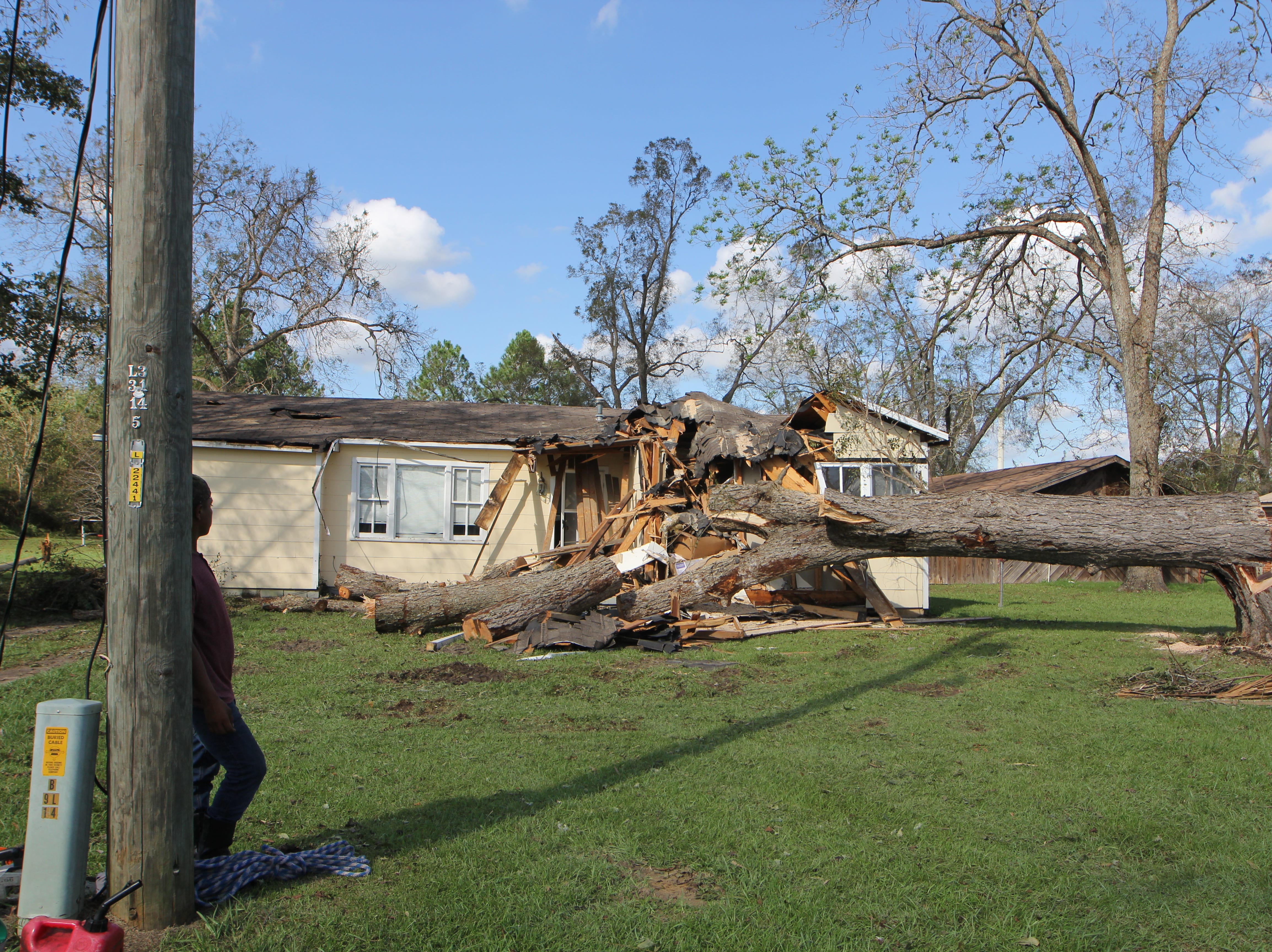 A large tree uprooted by Hurricane Michael smashes through a home in Greensboro, Gadsden County.