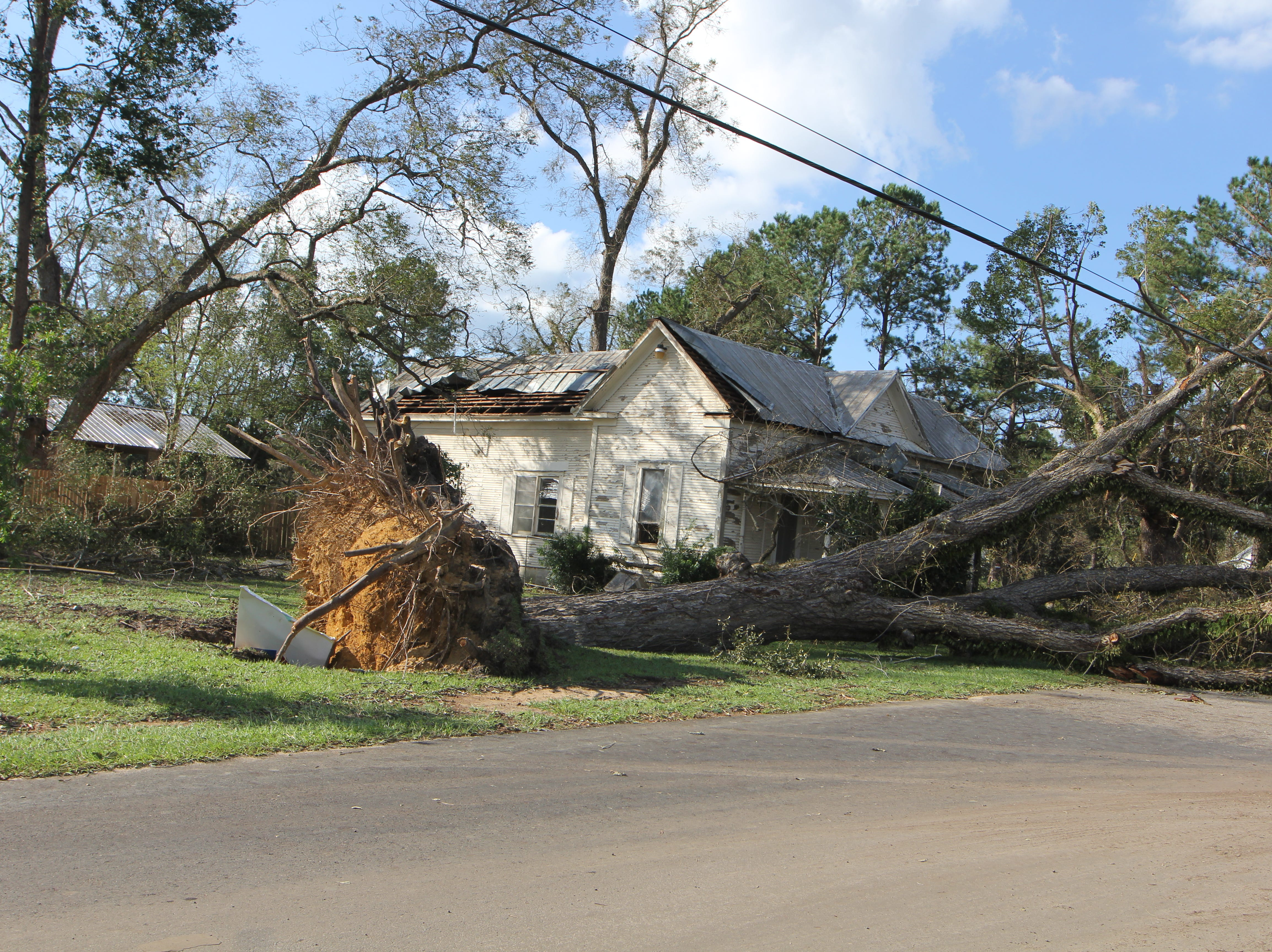 A large fallen oak in front of a home in Greensboro, Gadsden County, after Hurricane Michael.