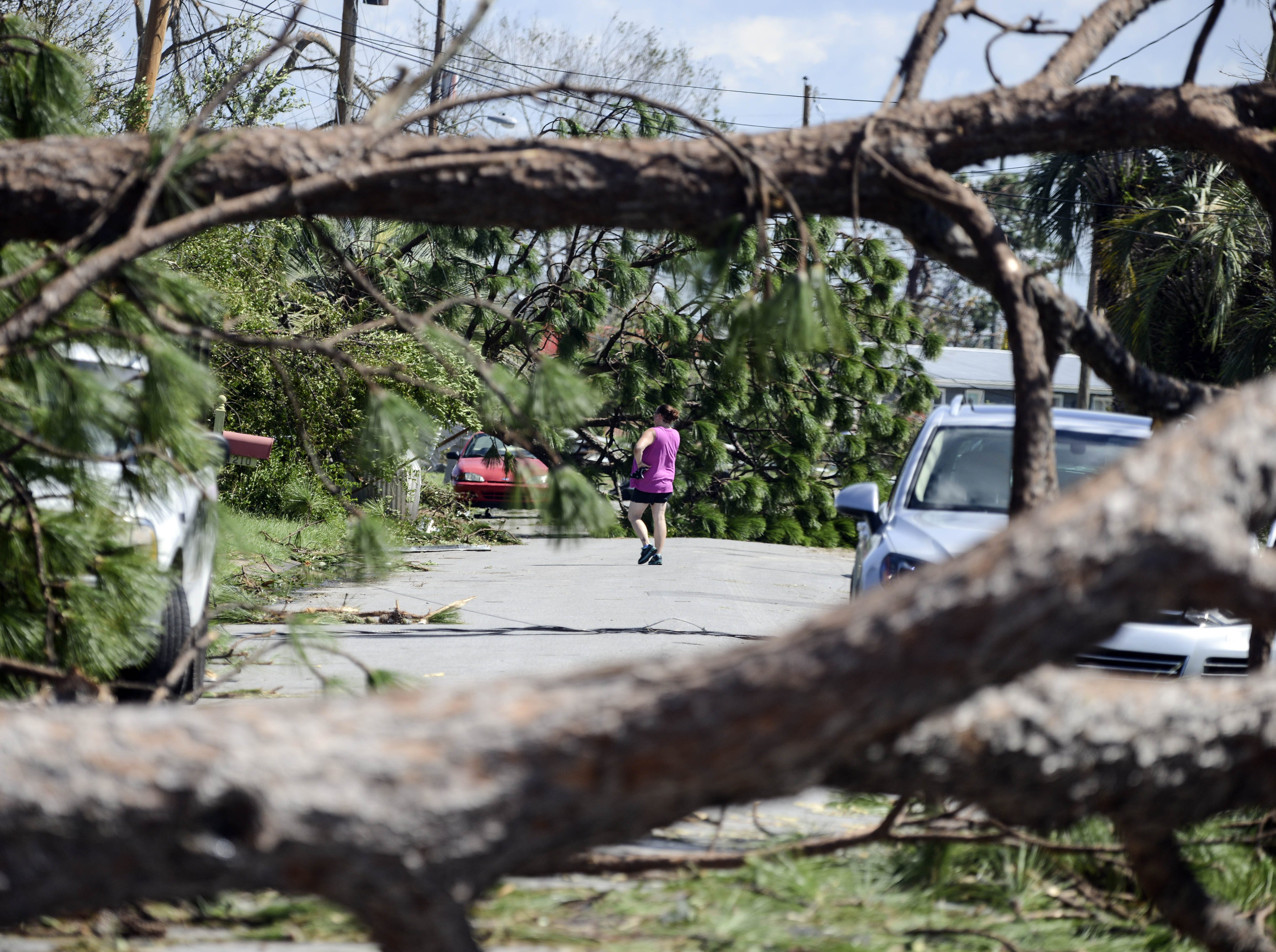 A resident of the Forest Park neighborhood in Panama City walks through her neighborhood Thursday. Many of the streets are blocked by trees blown down by Hurricane Michael.