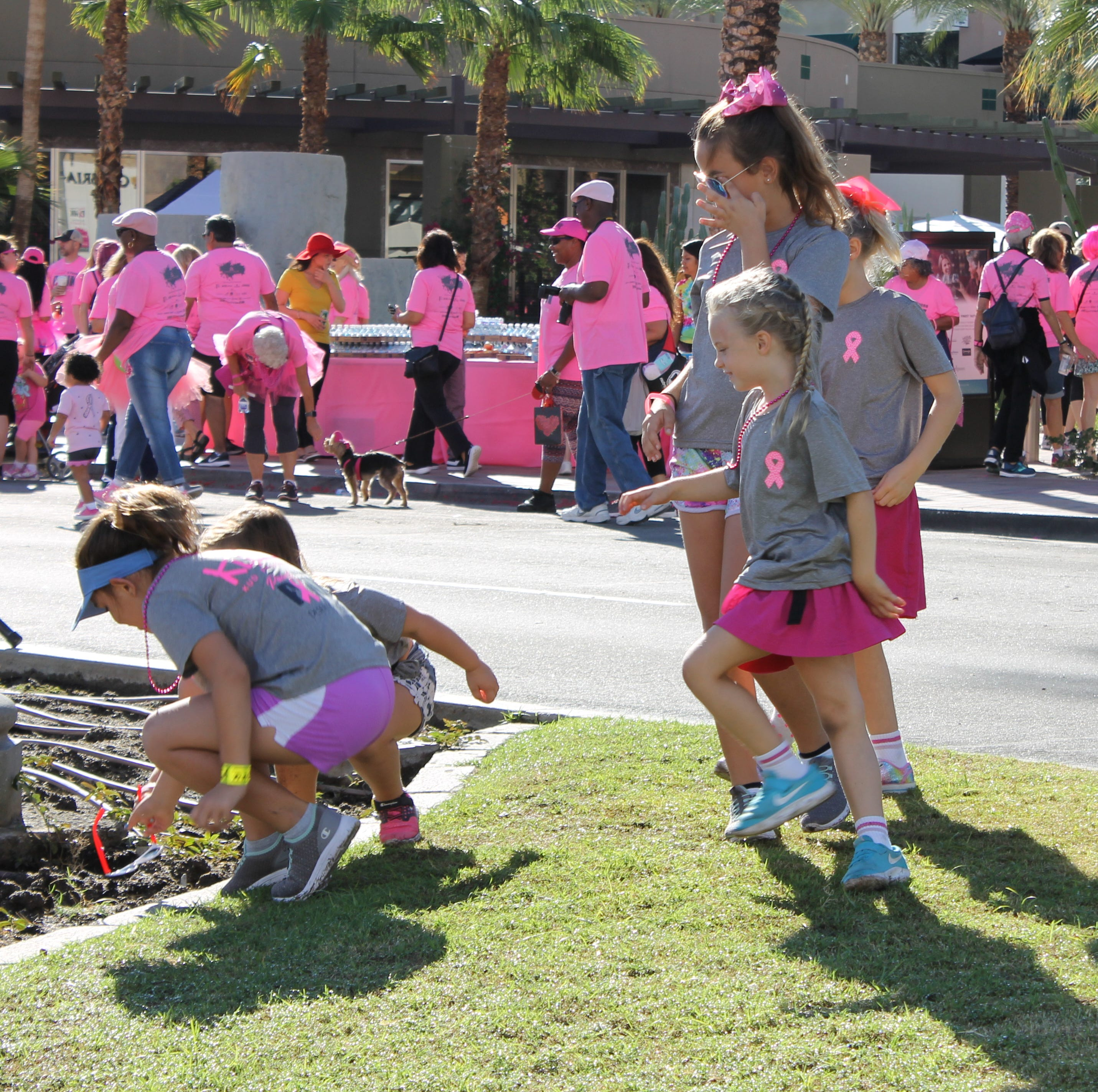 Paint El Paseo Pink strives to raise money for Desert Cancer Foundation