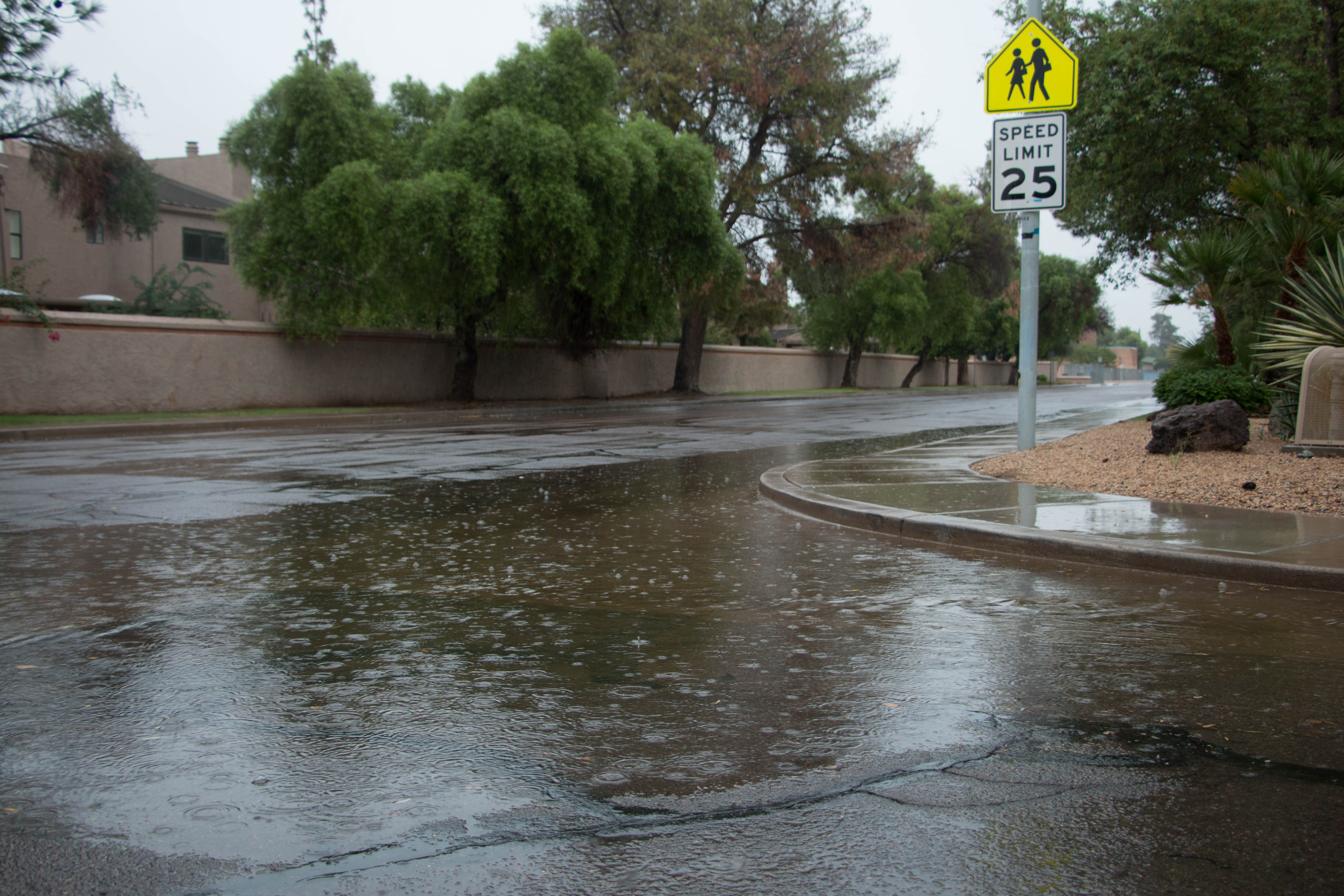 October seizes record of second wettest month for Phoenix – and we're only two weeks in | Arizona Central