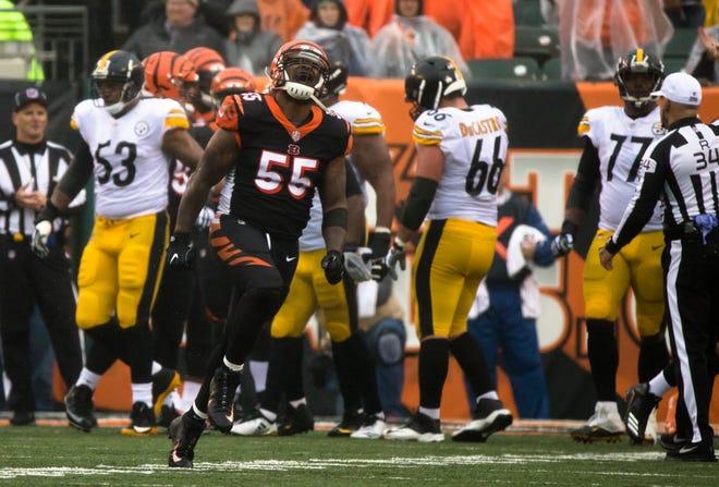Cincinnati Bengals linebacker Vontaze Burfict (55) reacts to a third down stop at the goal line during a Week 6 NFL game between the Cincinnati Bengals and the Pittsburgh Steelers, Sunday, Oct. 14, 2018, at Paul Brown Stadium in Cincinnati.