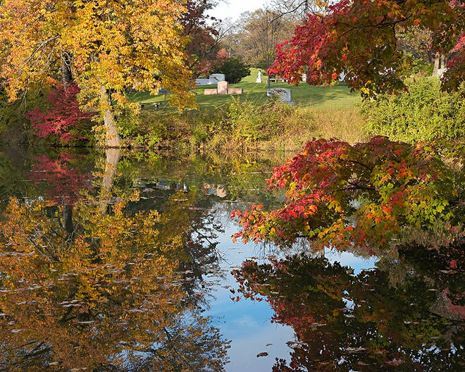 Fall leaves add color at Spring Grove Cemetery and Arboretum.