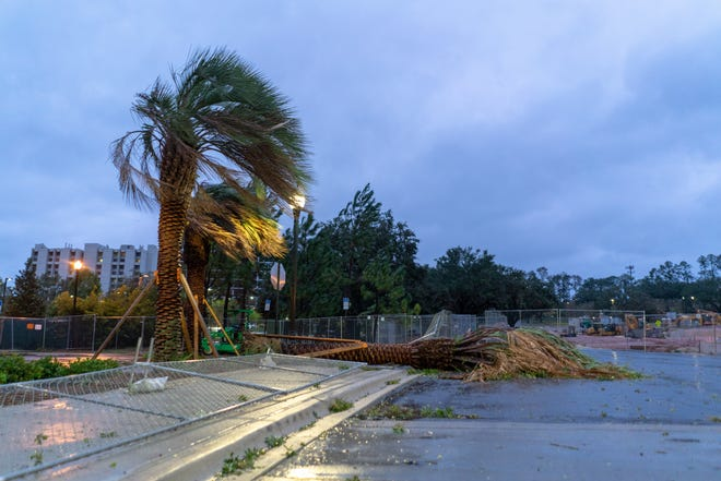 Category 4 Hurricane Michael passed through Tallahassee with peaks winds up to 71 mph.