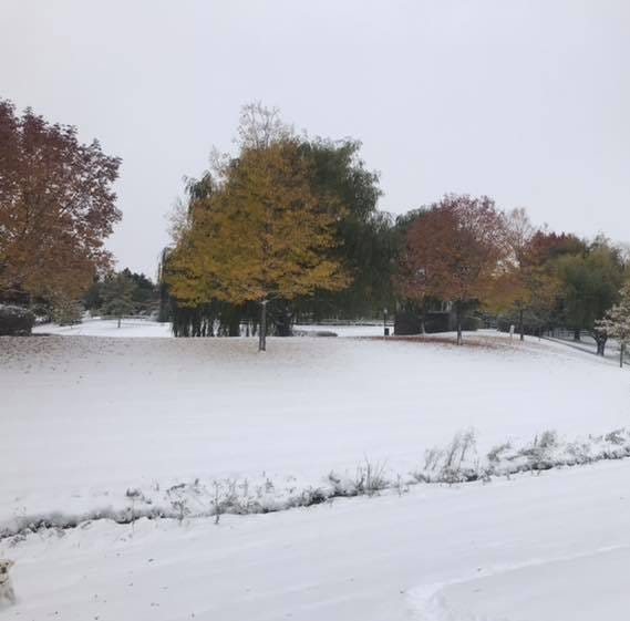 Fort Collins snow forecast: Several inches accumulate overnight, warm temperatures on the way