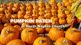 North Naples Church is hosting its annual fundraiser pumpkin patch for the church's youth ministry.