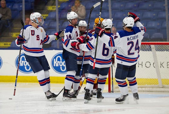 The lone chance for USA Hockey Arena fans to cheer Saturday afternoon was after this goal by Judd Caulfield (14) early in the third period against Minnesota.
