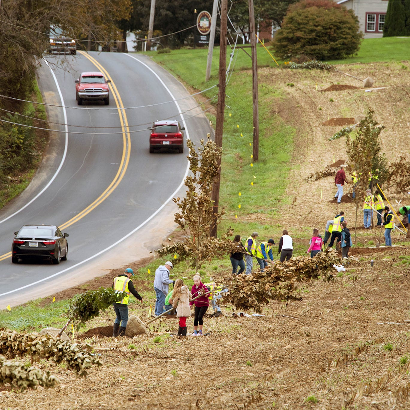 New trees on Road of Remembrance Veterans Memorial after 100 years on the Susquehanna Trail
