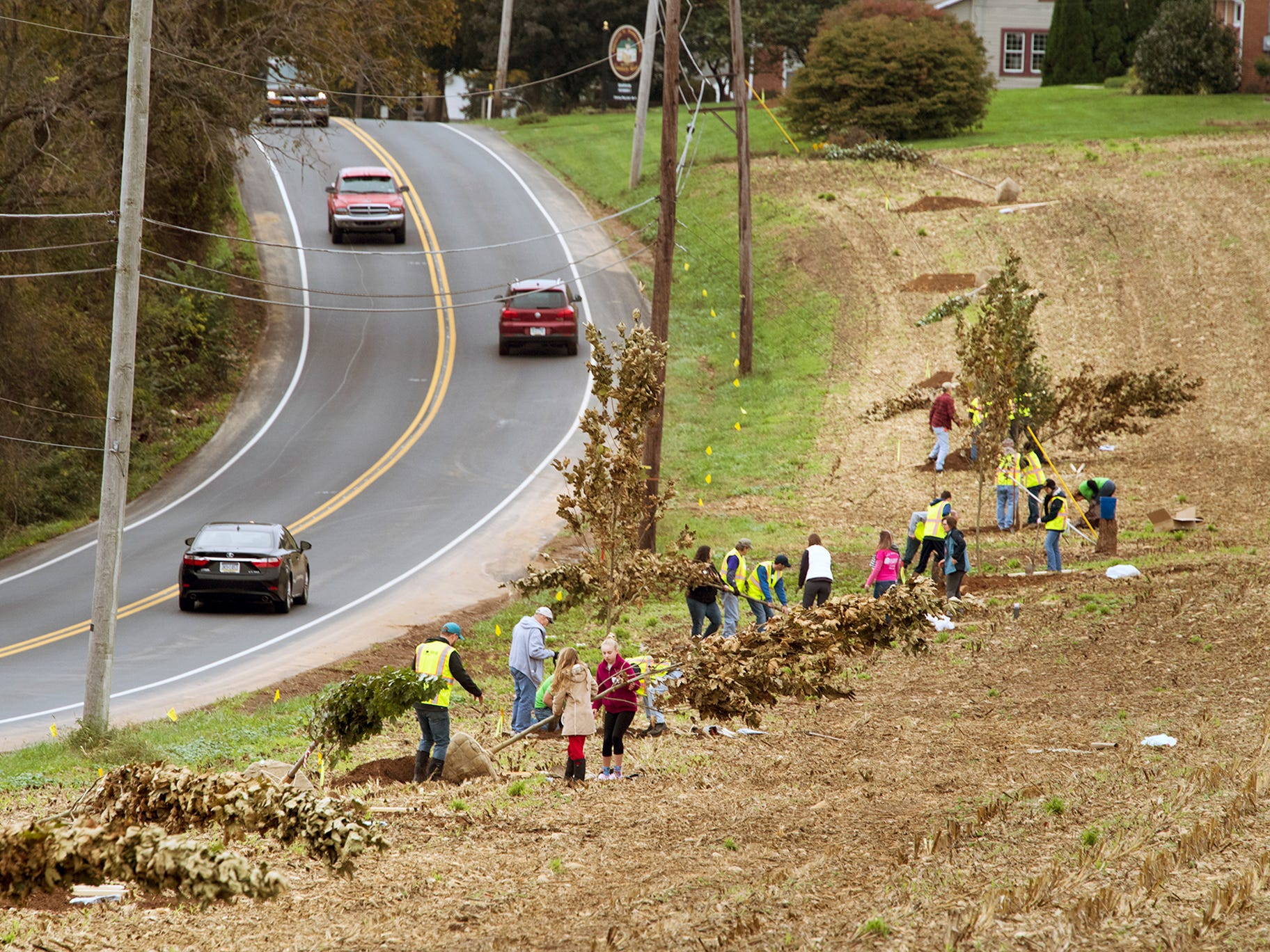 Volunteers plant a line of trees along the Susquehanna Trail  in Shrewsbury Township Sunday. A total of 61 trees were planted from Loganville south through Shrewsbury Township.