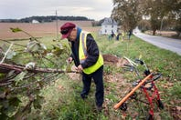 How to plant a legacy tree on the Road of Remembrance Veterans Memorial