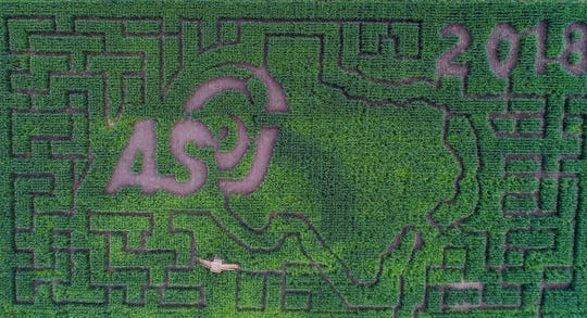 An overhead drone photo shows the Circle S Corn Maze featuring the Angelo State University logo in Wall.