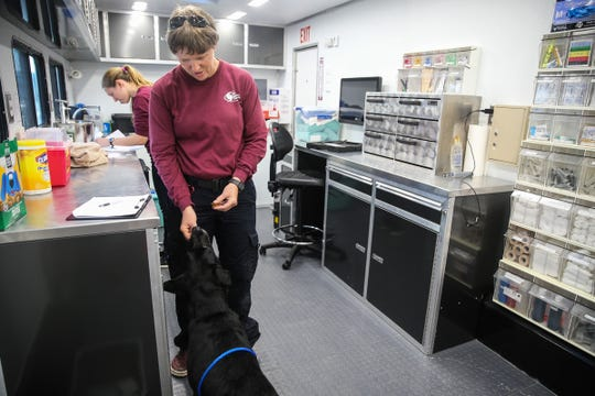 Deb Zoran, veterinarian with Veterinary Emergency Team, gives a search dog a treat after an exam Saturday, Oct. 13, 2018, in Junction.