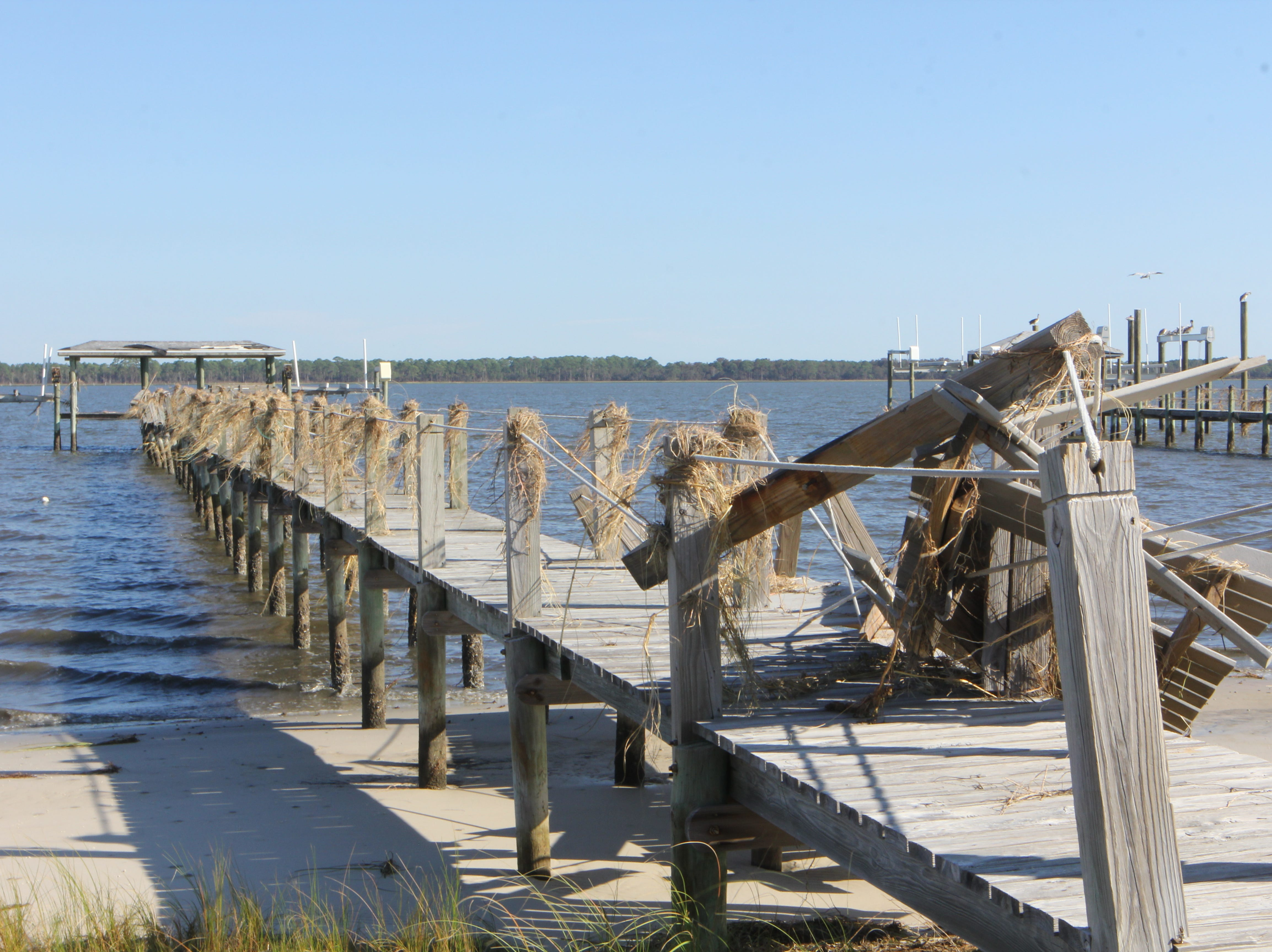 Sea grass clings to a damaged dock on Alligator Point after Hurricane Michael.