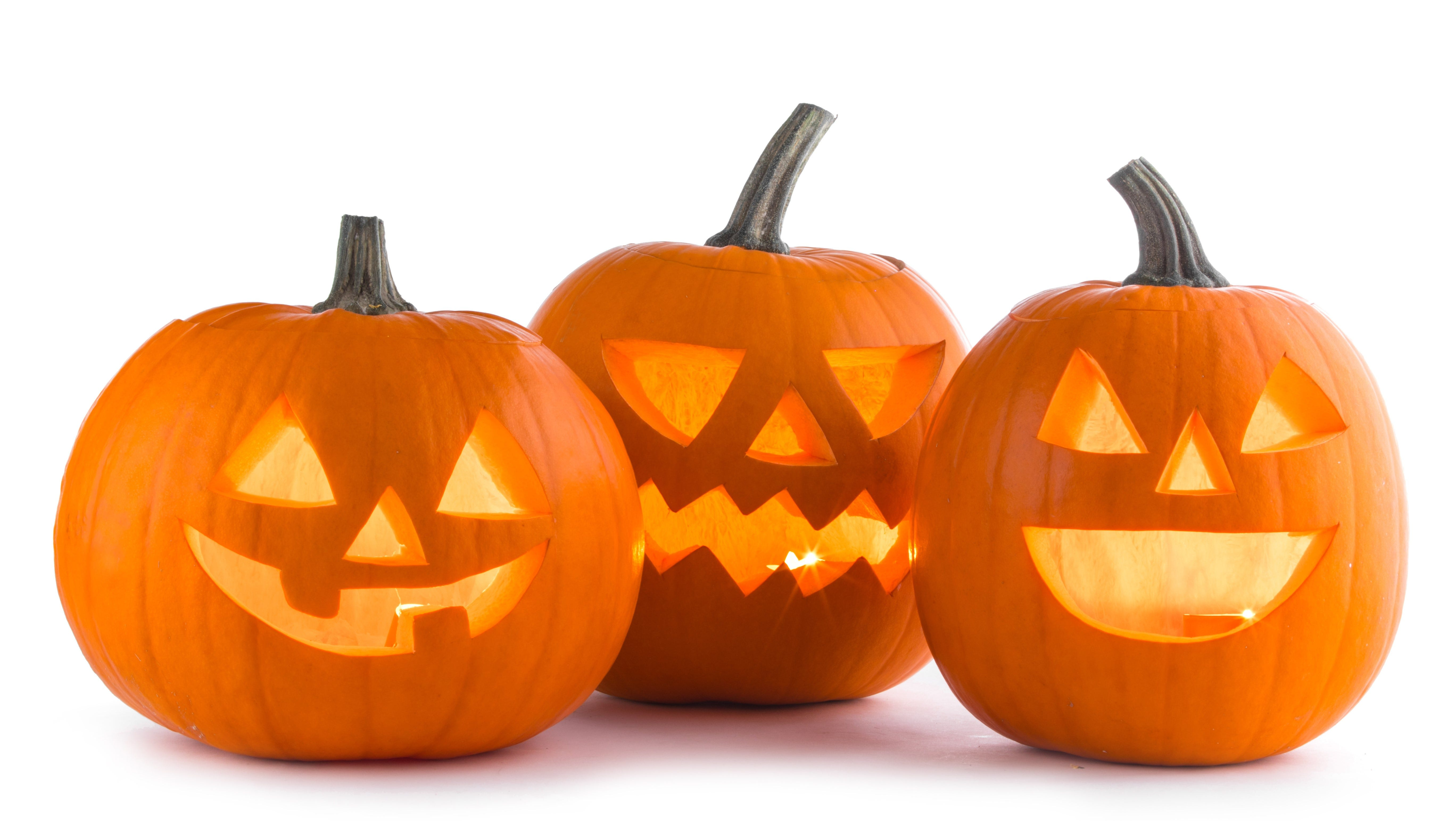 neighbors briefs: looking for halloween fun? find some here!