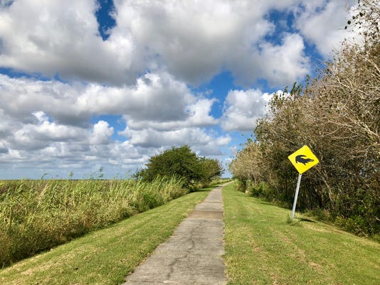 Creole Nature Trail 15