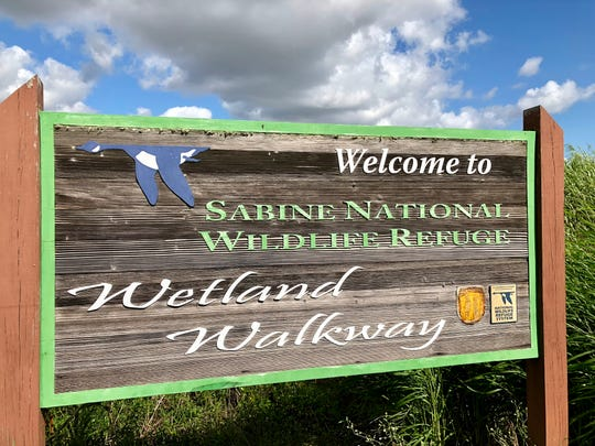 Visitors can experience the Wetlands Walkway on the Creole Nature Trail All-American Road through Cameron Parish.