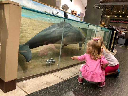 Visitors can learn about dolphins and other animals they could find in Louisiana marshes at the Creole Nature Trail Adventure Point.