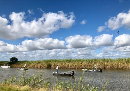 Folks run shrimp nets from their boats along Highway 27 in Cameron Parish, part of the Creole Nature Trail All-American Road.