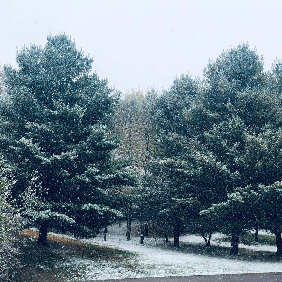 First snowfall of the season gives Wisconsin early taste of Winter