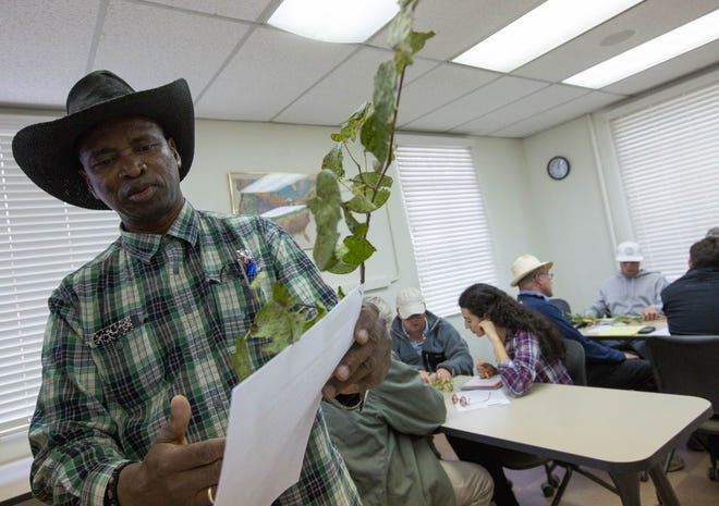 Soum Sanogo, a professor in the New Mexico State University college of agricultural consumer and environmental sciences, explains a questionnaire during a diagnosing plant disorders class on Monday Oct. 15, 2018, at the Fabian Garcia Science Center.