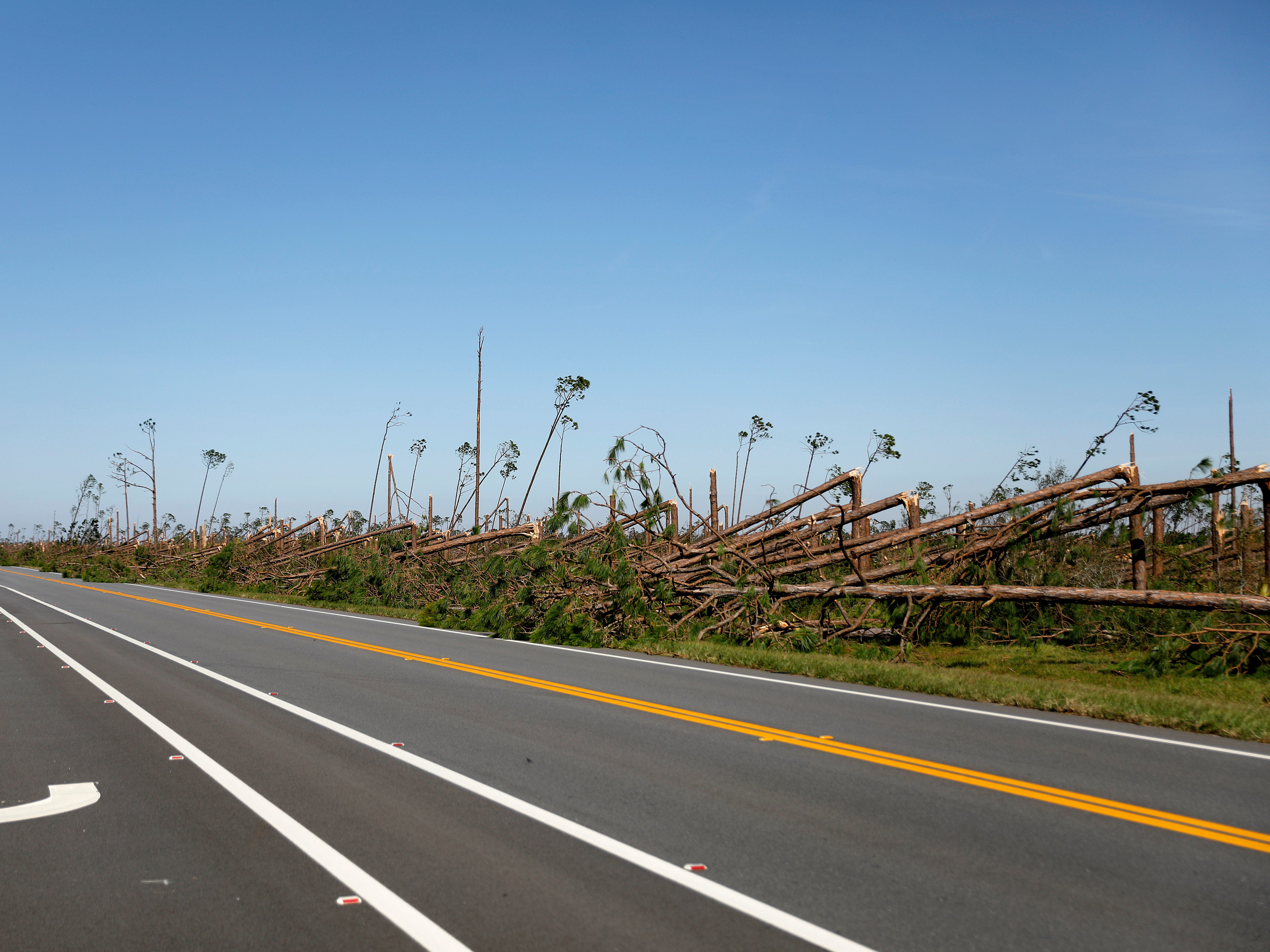 Trees are snapped outside Tyndall Air Force Base from hurricane Michael in Panama City, Fla., Thursday, Oct. 11, 2018.