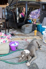 Cutie, a pitbull, relaxes near her owner Bobbie Amaya, who lost her mobile home during Hurricane Michael, as they camp in her minivan outside of her friend's vape shop along 15th Street in Panama City, Florida on Monday, October 15, 2018.  Amaya and her son survived the storm inside the vape shop, but the unit next door totally collapsed and damaged her vehicle that was parked in front of the door.