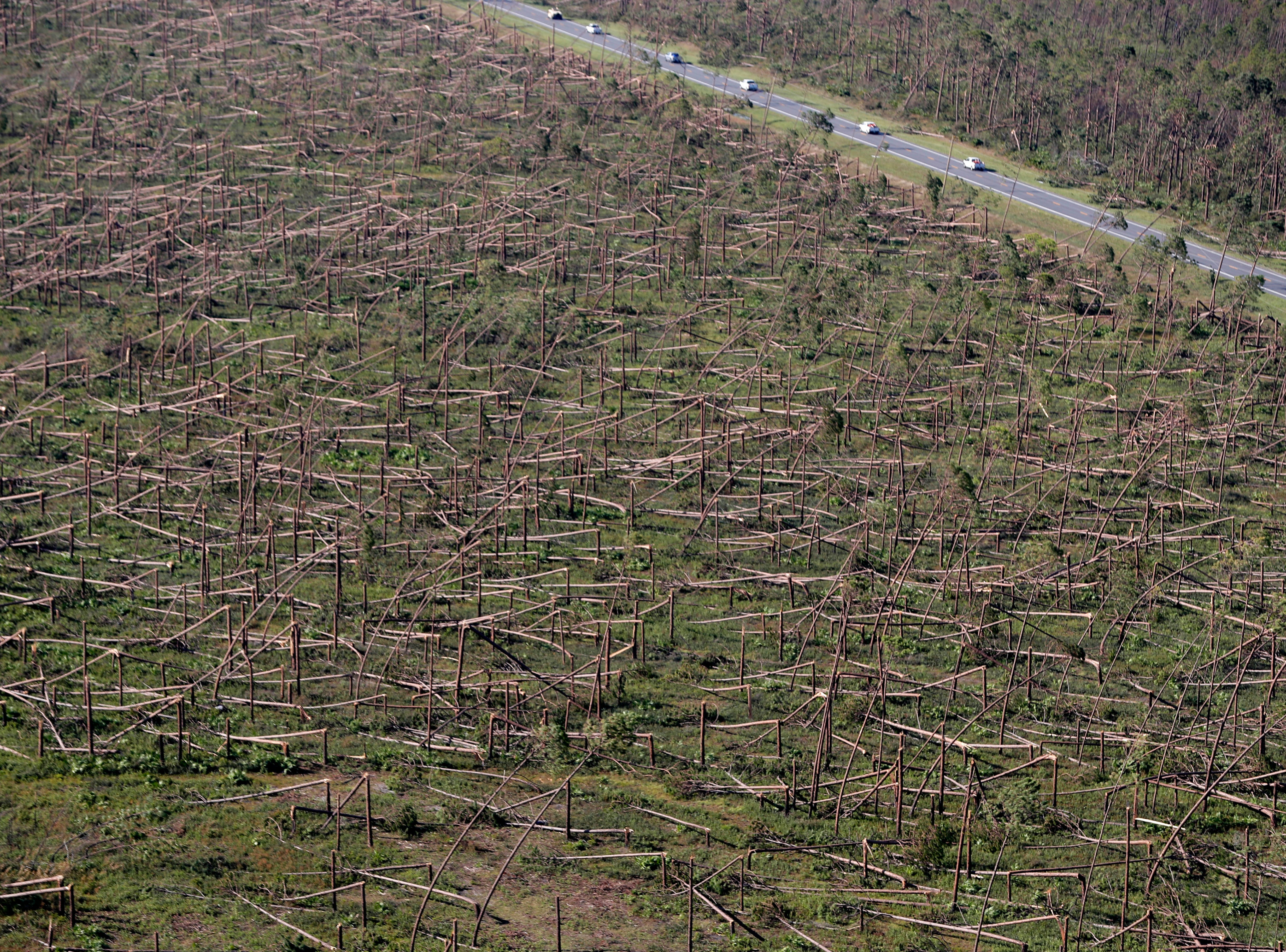 Downed trees are seen from the air on Tyndall Air Force Base in the aftermath of Hurricane Michael near Mexico Beach, Fla., Friday, Oct. 12, 2018.