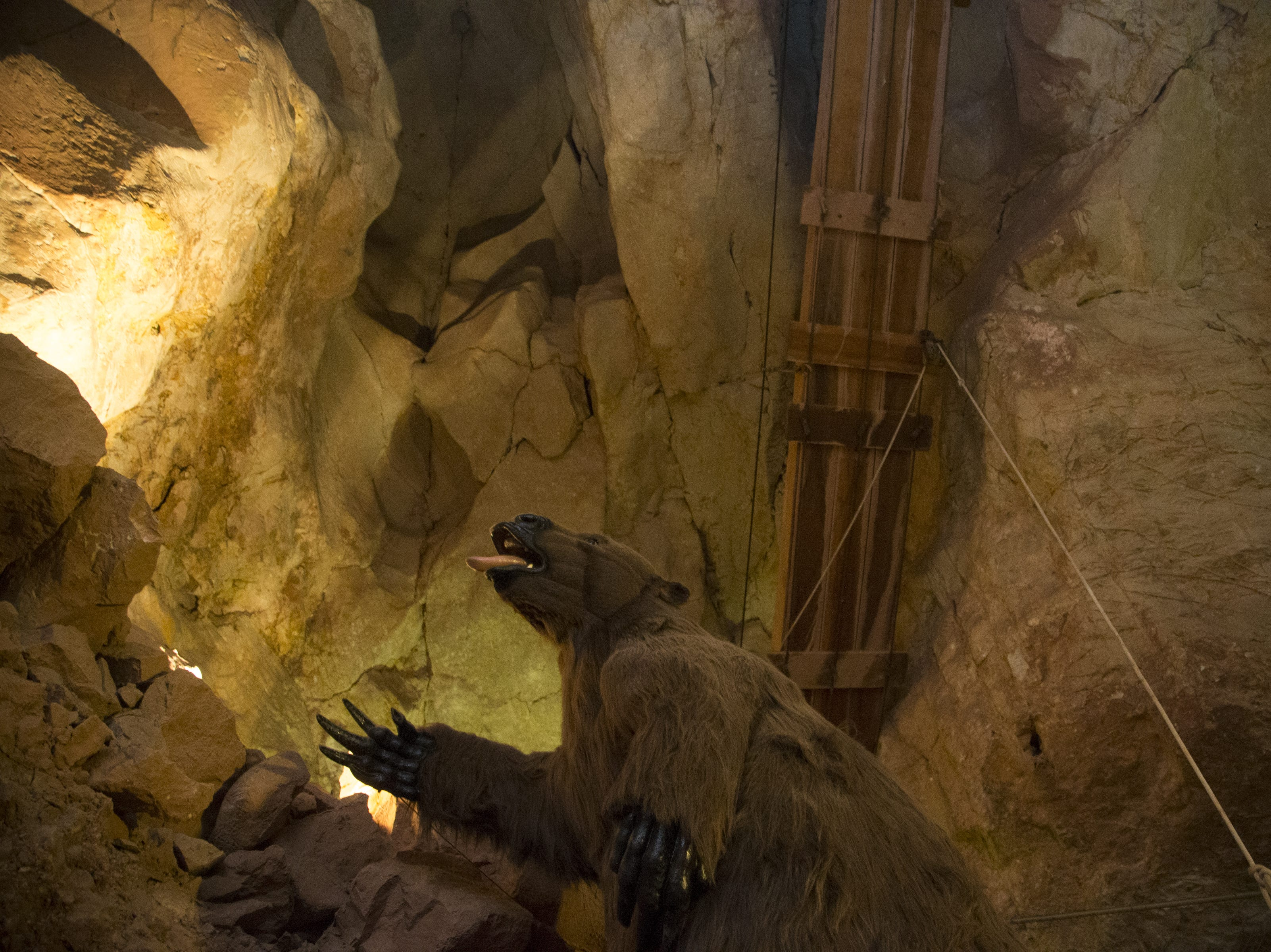 Guests staying in the Caverns Suite share the space with a replica of a giant ground sloth, extinct for 11,000 years. There's also a mummified bobcat on display.