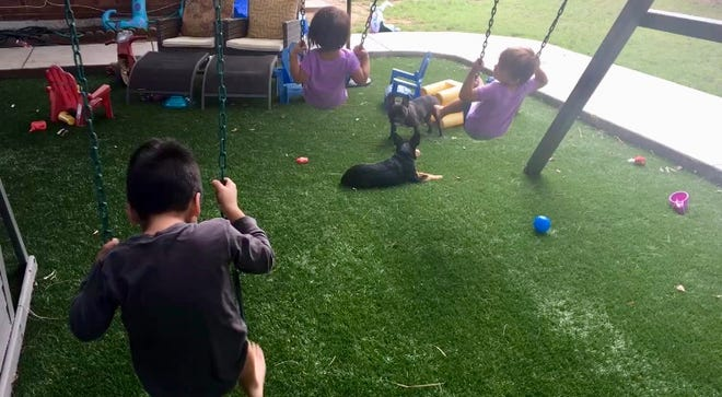 I coached my cousin's kids in the fine art of swinging. They kind of got it.