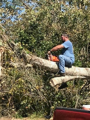 Anthony Pullam cuts away limbs from a fallen tree in Liberty County.