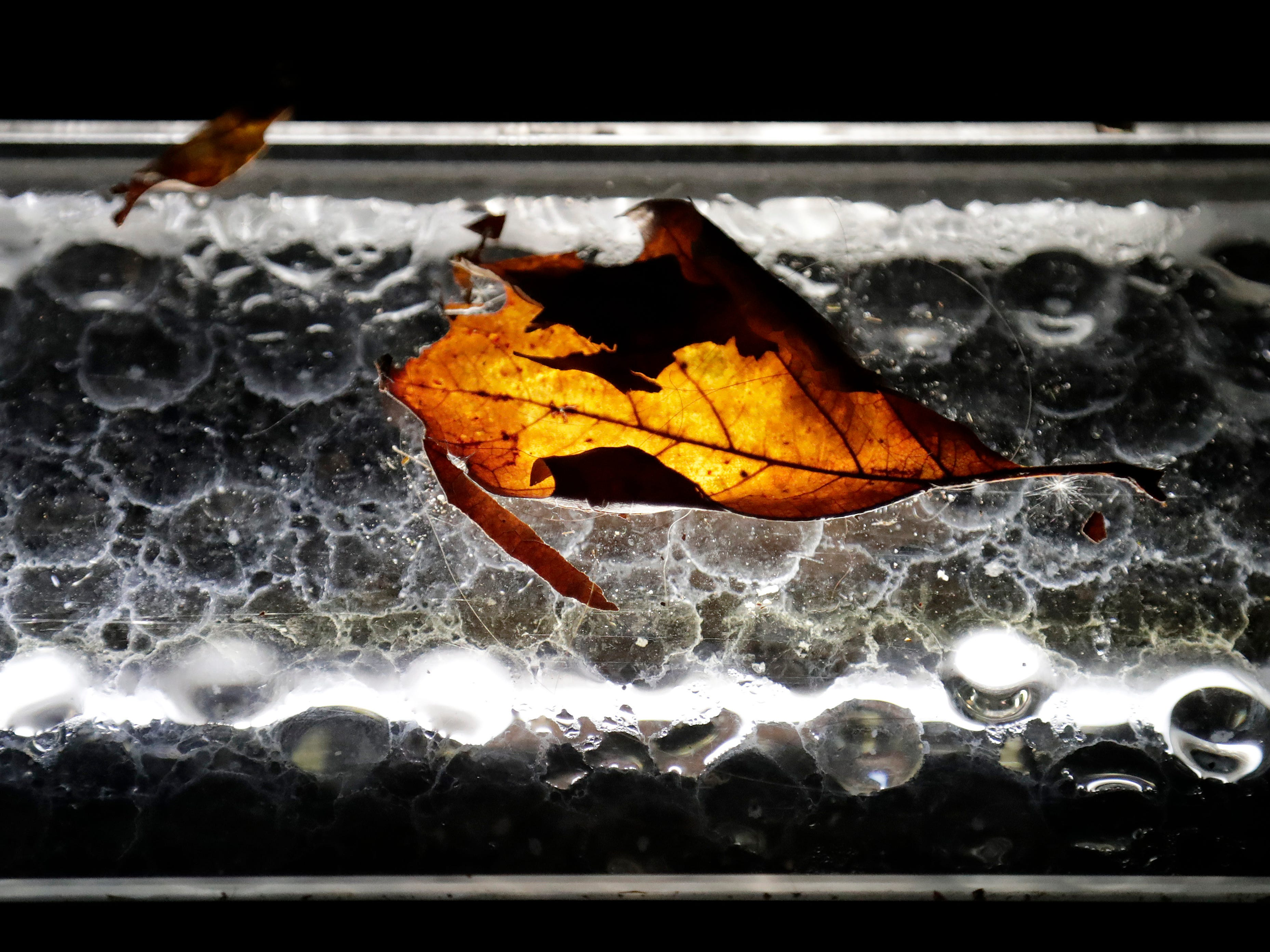 A fallen leaf rests on a light panel at the Empty Sky memorial on a clear fall night at Liberty State Park, Friday, Oct. 12, 2018, in Jersey City, N.J.