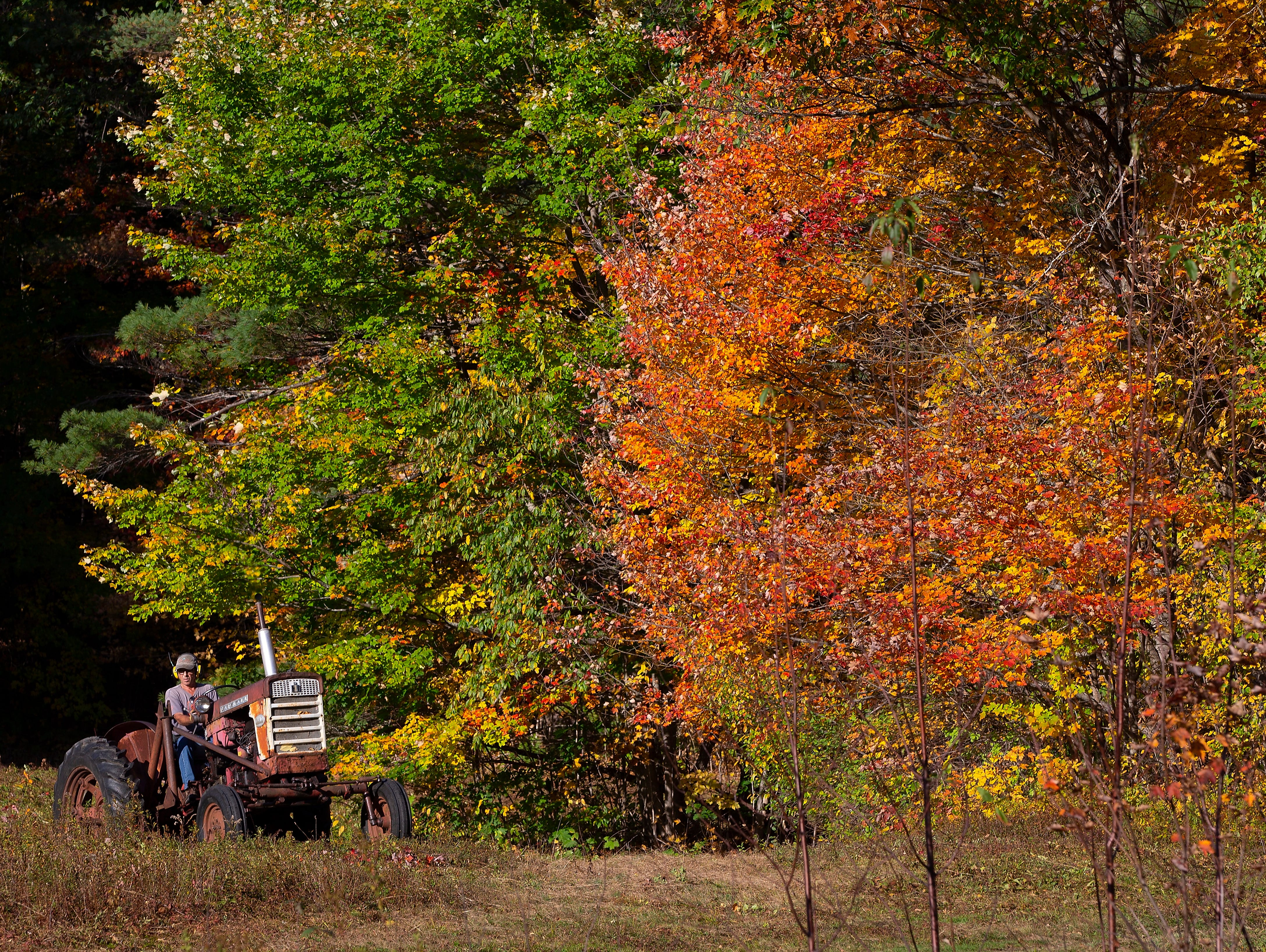 A man uses a tractor to clear a field lined with colorful trees in Bartlett,N.H. on Oct. 10, 2018.