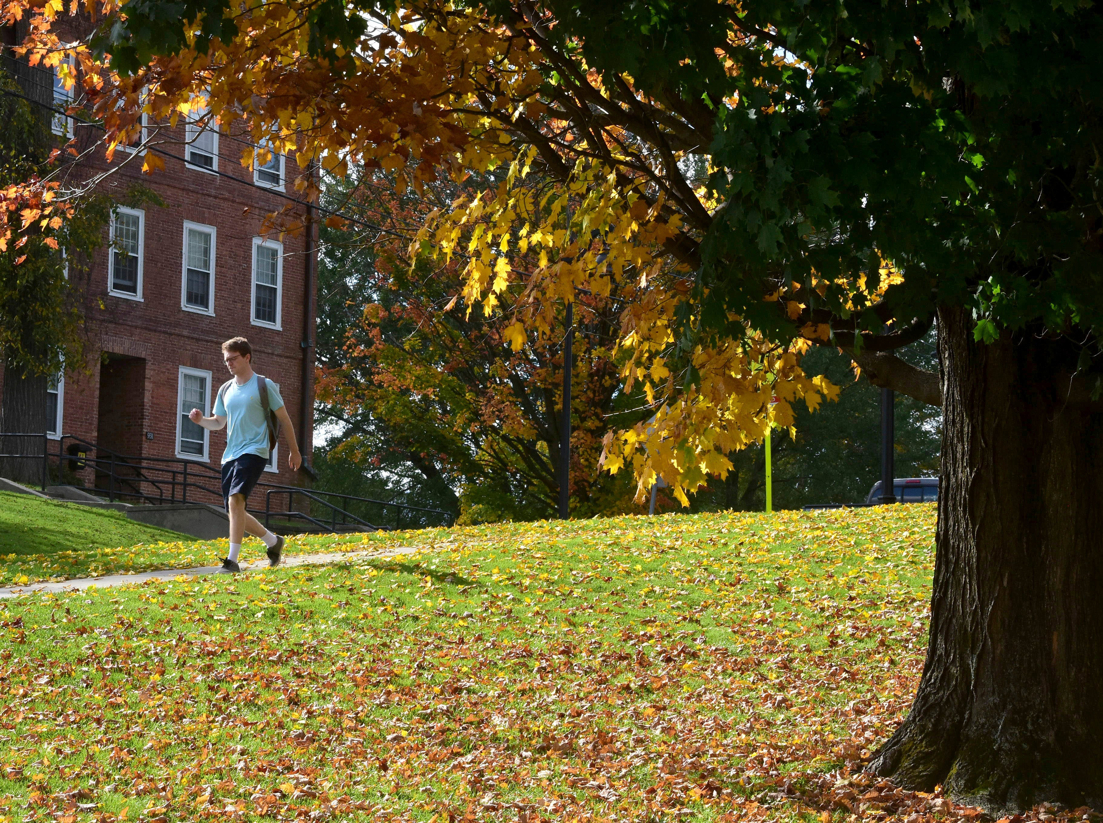 As temperatures reached into the low 80's many Williams College students wore shorts as they walked across a colorful campus ripe with foliage and a blanket of autumn leaves on Wednesday, Oct. 10, 2018 in Williamstown, Mass. in the Berkshires.