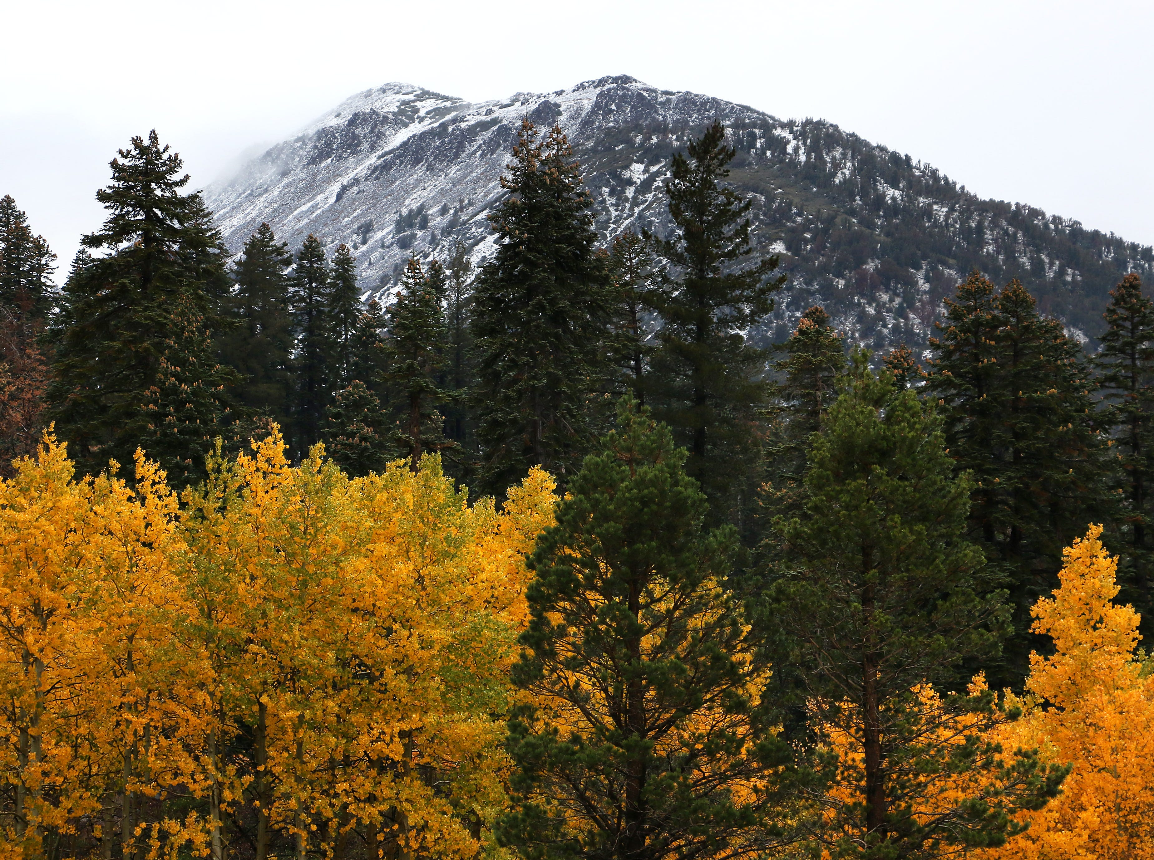 Fall colors and a dusting of new snow are seen on Mt. Rose near Reno on Oct. 3, 2018.
