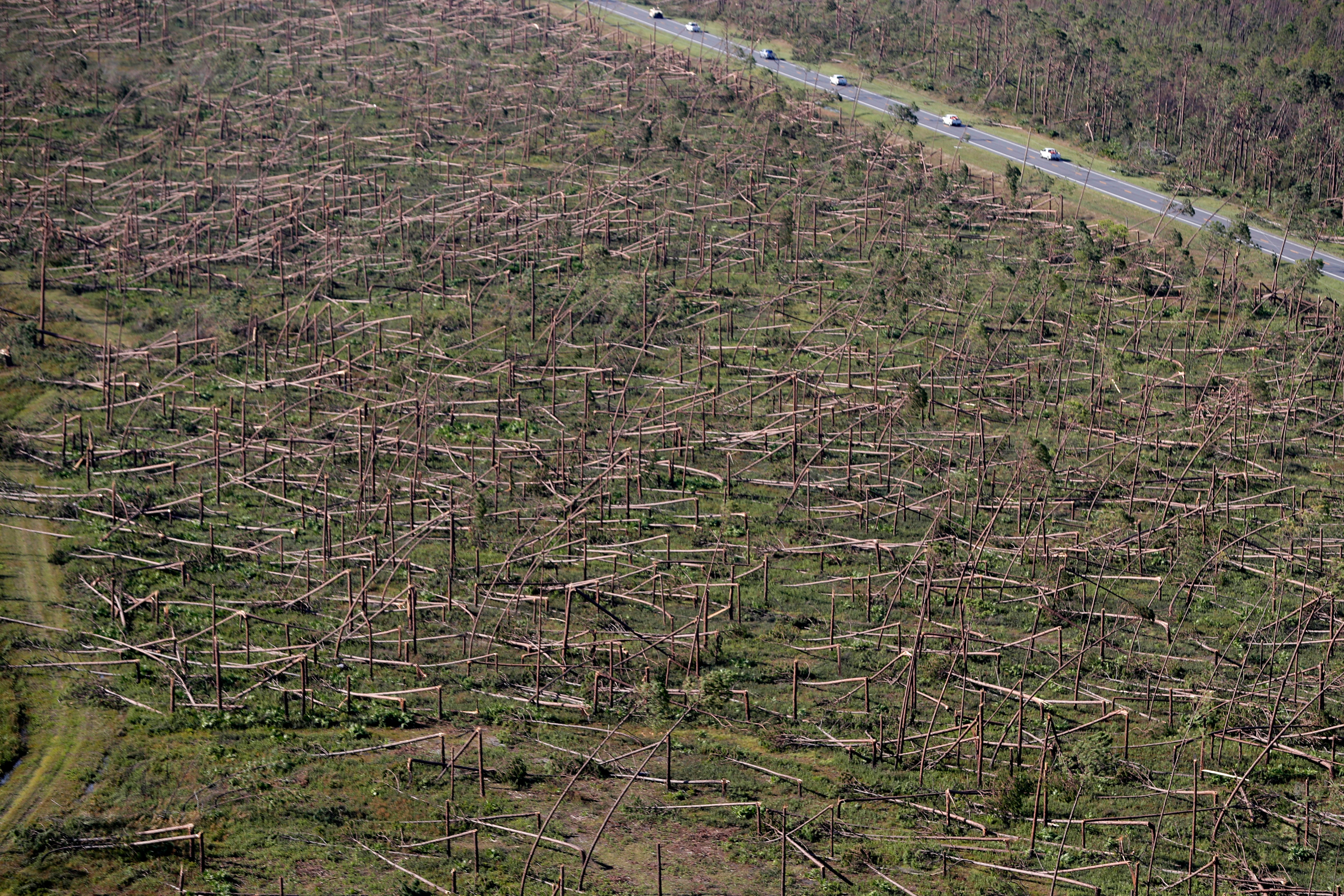 In this Oct. 12, 2018, file photo, downed trees are seen from the air on Tyndall Air Force Base in the aftermath of Hurricane Michael near Mexico Beach, Florida.