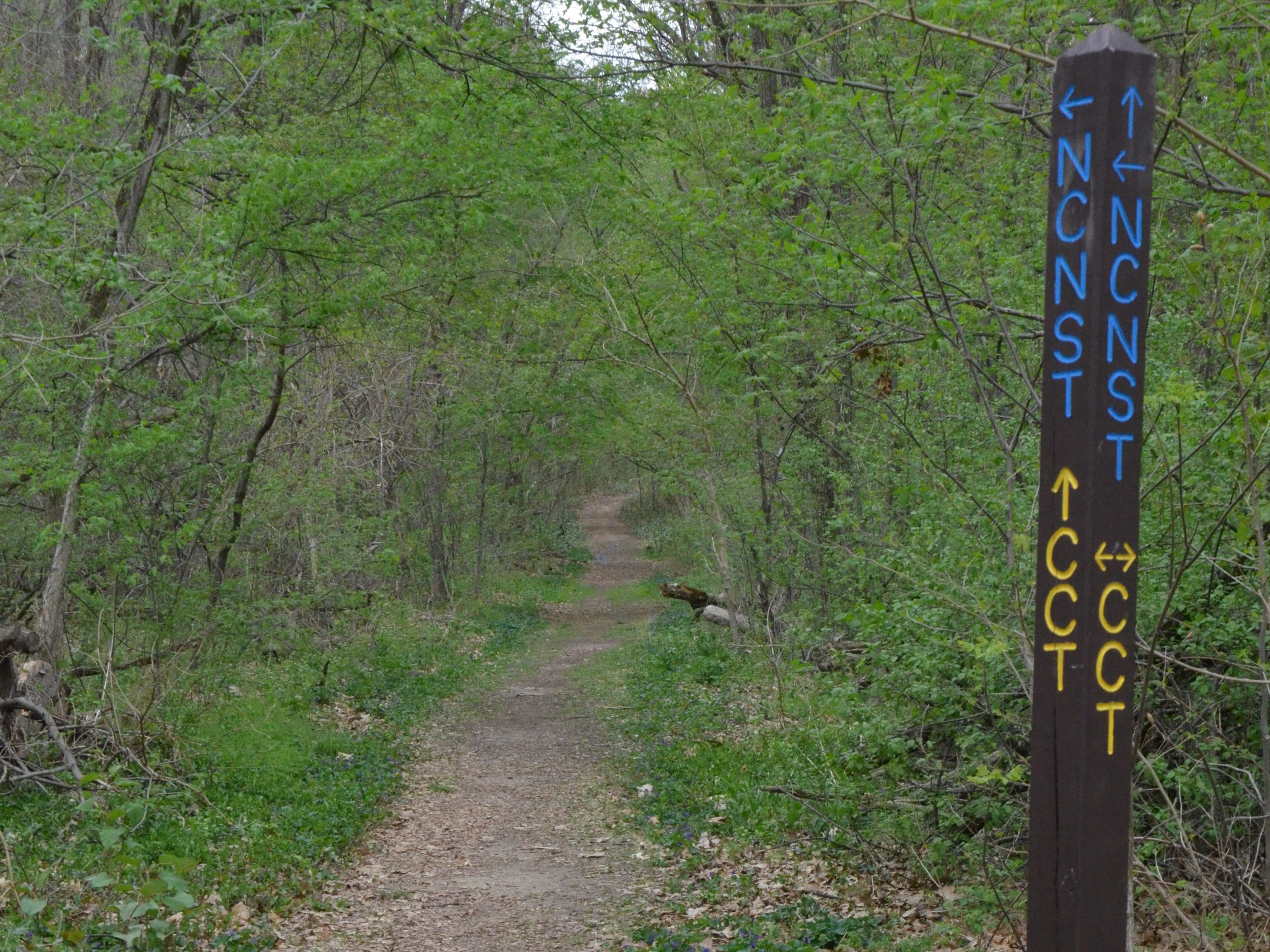 Calhoun County will be a crossroads in a trail network stretching thousands of miles