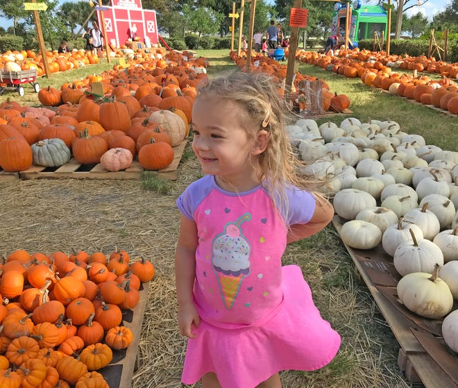Isabella enjoys the pumpkin patch located at the Church at Viera on a recent Sunday.