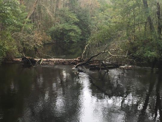 The Rancocas Creek runs alongside the former Pemberton Township campus of Rowan College at Burlington County.