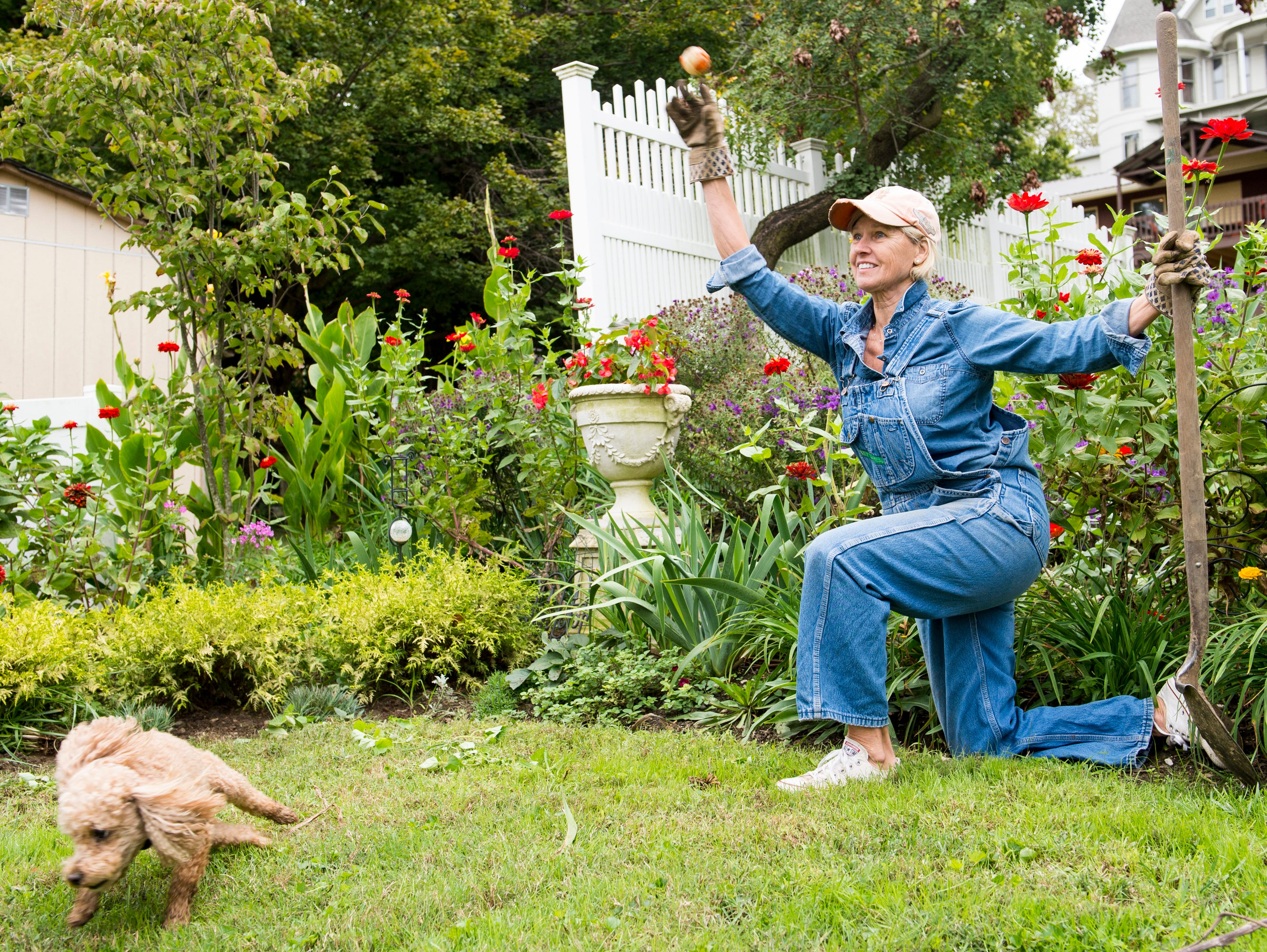 Marietta Peckenpaugh takes a break from putting the garden to bed to play fetch with her french poodle, Bailey, at her home off Main Street in downtown Henderson Tuesday, Oct. 16, 2018.