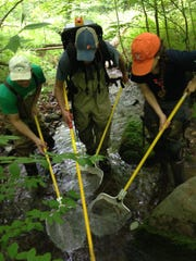 Team members collect samples in a Pennsylvania stream.
