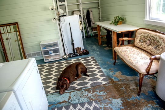 Michele Mercer's dog Dewey rests on a carpet in the large mud room at the home on Monday, Oct. 8, 2018, in Okemos. The 2,000-square-foot Queen Anne Victorian house is on just under two acres and was built in 1893.